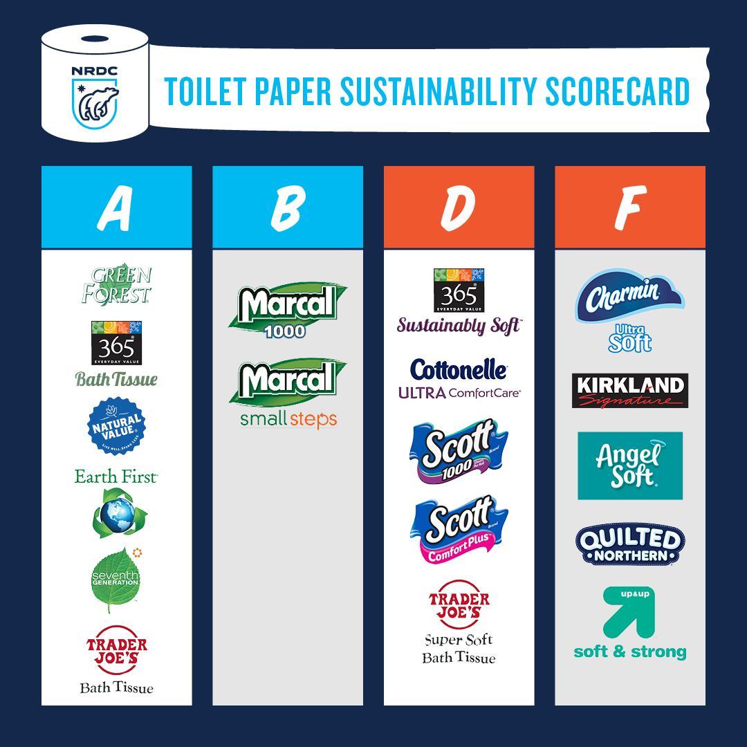 toilet-paper-1550692574169-1550692577064